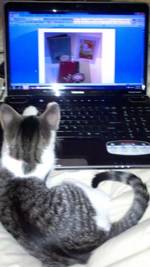 Abby...blog hopping